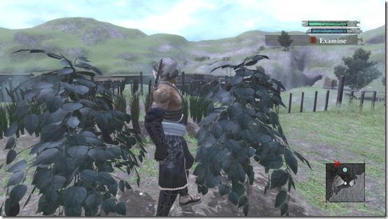 NIER Cultivate4 harvest