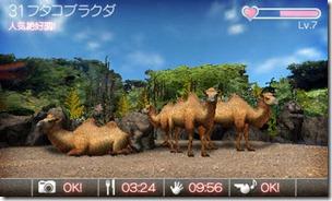 animal_resort_screen02