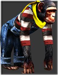 chimpanzee_b
