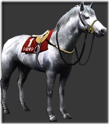 horse_d