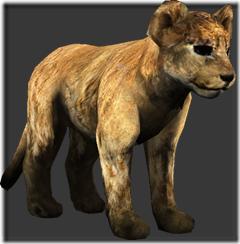 lion_child