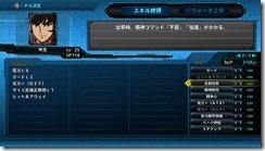srwt systems 13