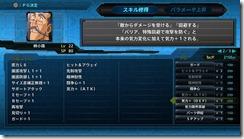 srwt systems 14