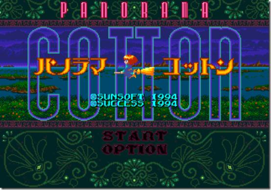 panorama cotton 1