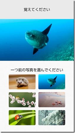 kawashima 8